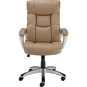 Staples Burlston Luxura Managers Chair Review April 2019