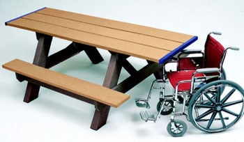 Outdoor Activities for Wheelchair Users: Picnic in the Park