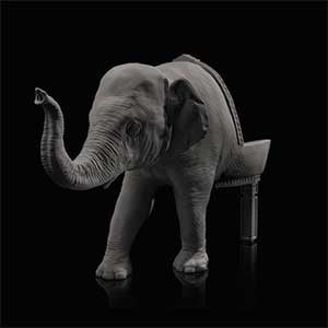 Baby Elephant Chair, a chair featuring a sculpture of a baby elephant's head and front legs for the backrest and backlegs