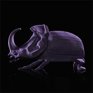 Beetle Chair, a chair featuring a huge beetle sculpture for the backrest and legs
