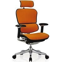 Small Image View of Ergohuman Executive Chair for Best Office Chair for Big and Tall