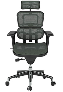 Front Image View of Ergohuman High Back Swivel Chair