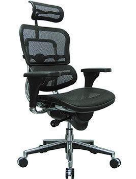 Left Image View of Ergohuman High Back Swivel Chair