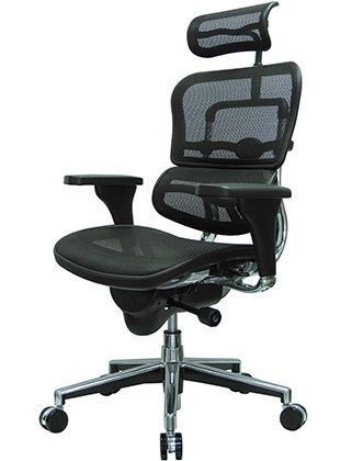 Right Image View of Ergohuman High Back Swivel Chair