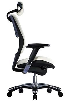 Sensational Best Office Chair For Sciatica Nerve Pain 2019 Top 5 Picks Caraccident5 Cool Chair Designs And Ideas Caraccident5Info